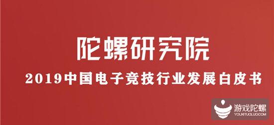 《2019中国电子竞技行业发展白皮书》(上篇)丨陀螺研究院