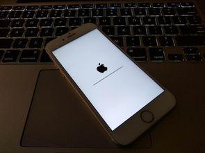 苹果减税政策跟进:已有国内开发者取得苹果15%抽成比例资格
