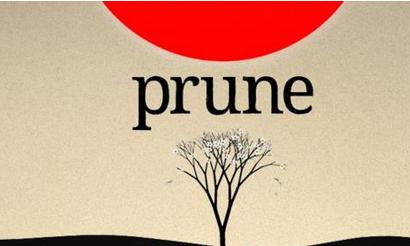 2015最佳iPad游戏《Prune》开发者复盘:5大心得与4大失误